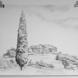 Large Drawing 11