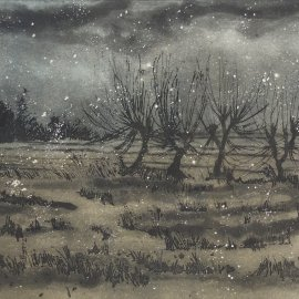 Willows in Winter - Querceto